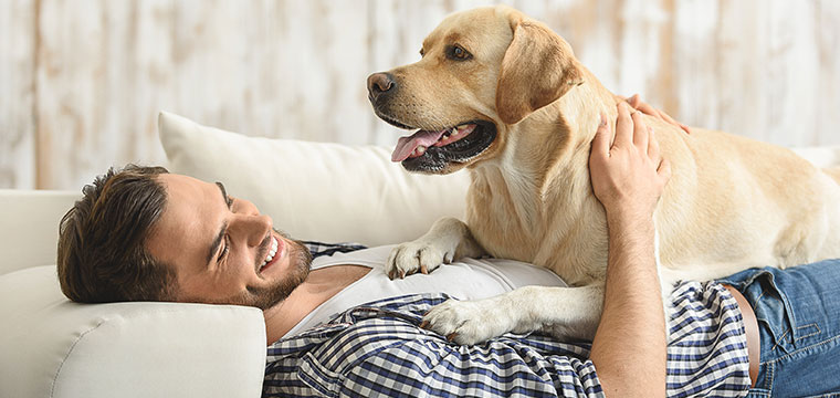 man with dog on a sofa
