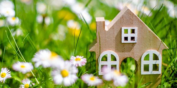 model of a house in field of flower pollen